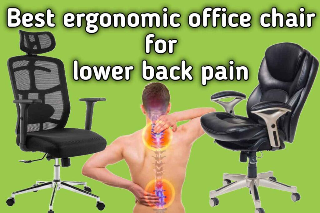 Best ergonomic office chair for lower back pain SeCoBuy